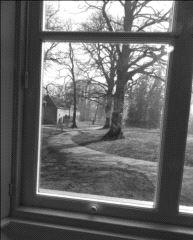 blik door het raam zwart wit.JPG
